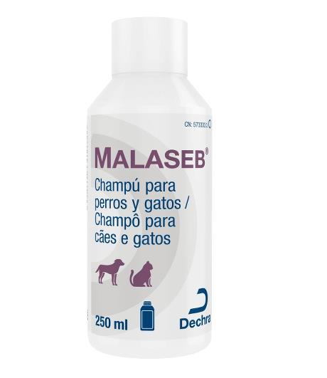 MALASEB CHAMPU 250 ML