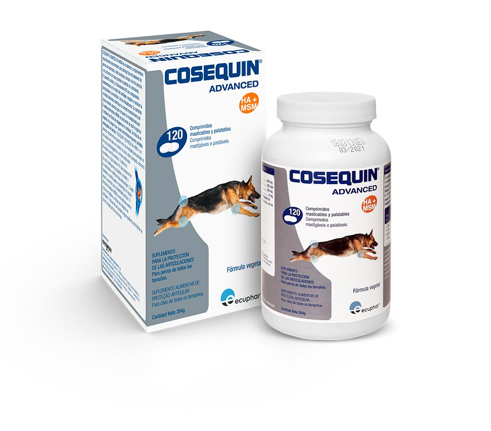 COSEQUIN HA 120 COMP