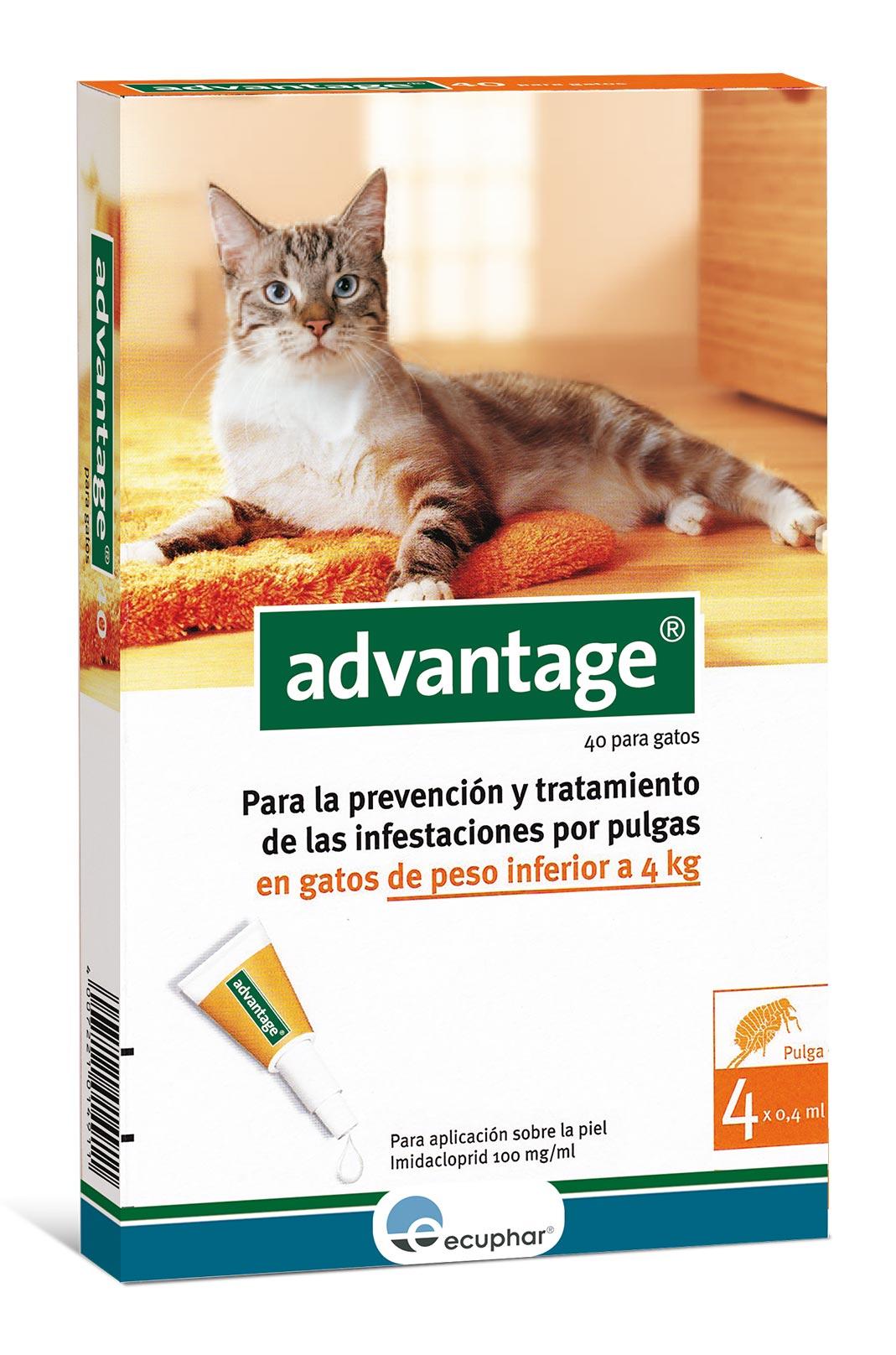 ADVANTAGE 40 (0-4 KG) GATO 4 PIP