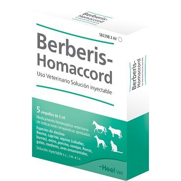 BERBERIS HOMACCORD 50 AMP 5 ML