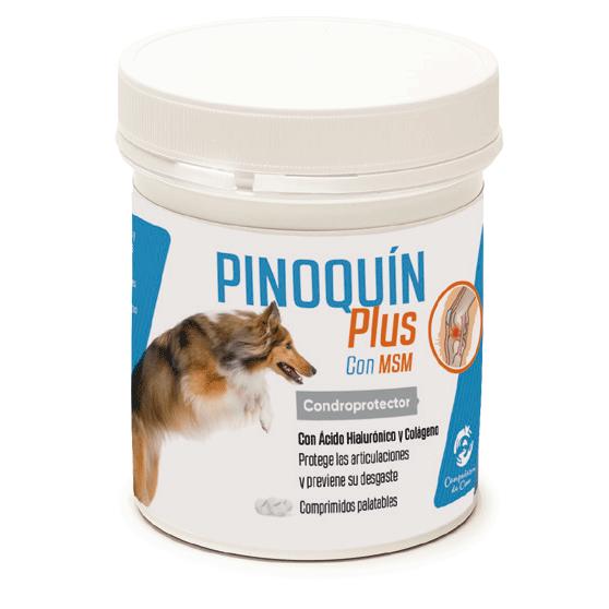 PINOQUIN PLUS 160 COMP