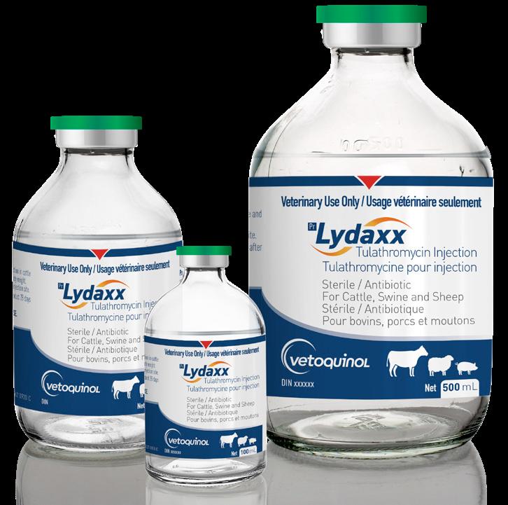 LYDAXX 100 ML