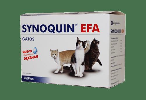 SYNOQUIN EFA GATOS 90 CAPS